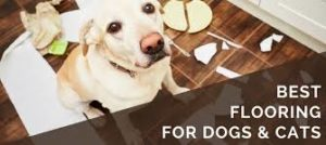 best floors for your pet