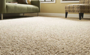 carpet flooring in Hillcrest